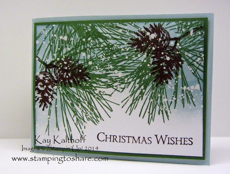 Ornamental Pine in the Snow at Christmas with a How To Video!