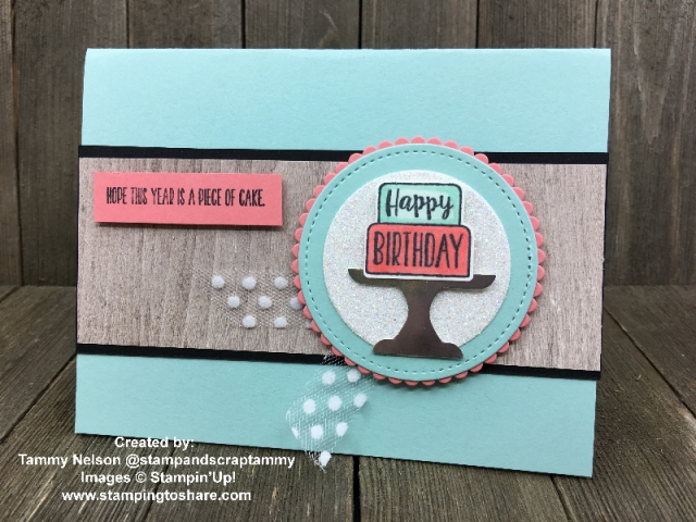 Stampin' Up! Piece of Cake Bundle created by Tammy Nelson for Demo Meeting Swap #stampingtoshare