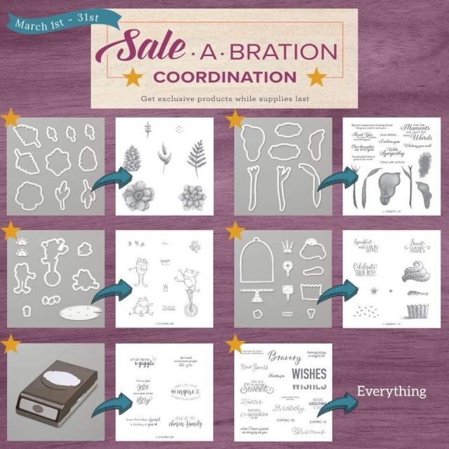Sale-a-bration Coordination Products Available to Purchase in March 2019 Only #stampingtoshare