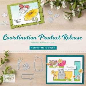 Coordination Product Release Begins TODAY!